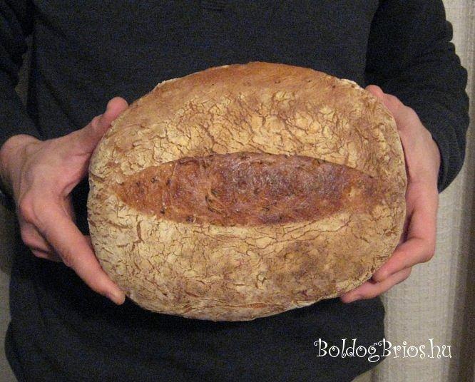 Búzamagos kenyér